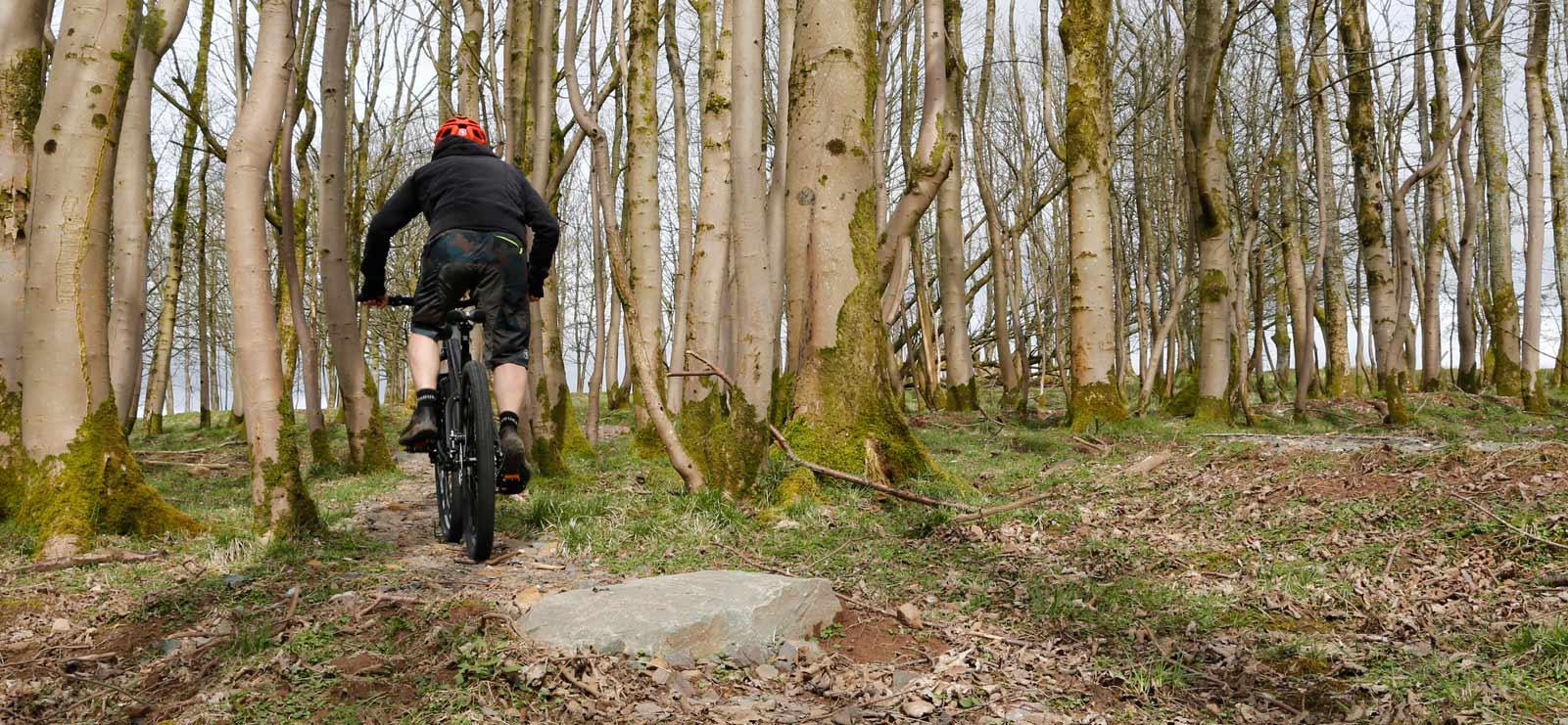 Endura Forrest Trails